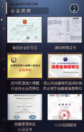 2019|阳澄湖红芯大闸蟹品牌合伙人推介会